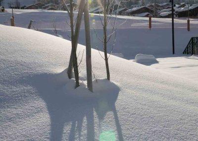 Berod-Sports-Location-ski-vtt-Crest-Voland-18