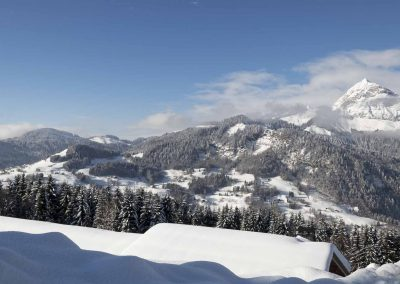 Berod-Sports-Location-ski-vtt-Crest-Voland-38